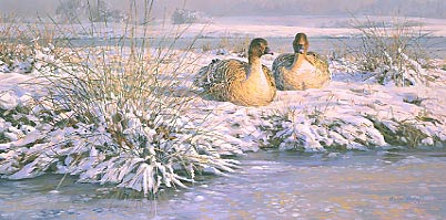 Goose paintings: Painting of pink-footed geese in the snow