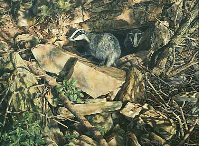 wildlife art paintings: An oil painting depicting two badgers emerging from a cave
