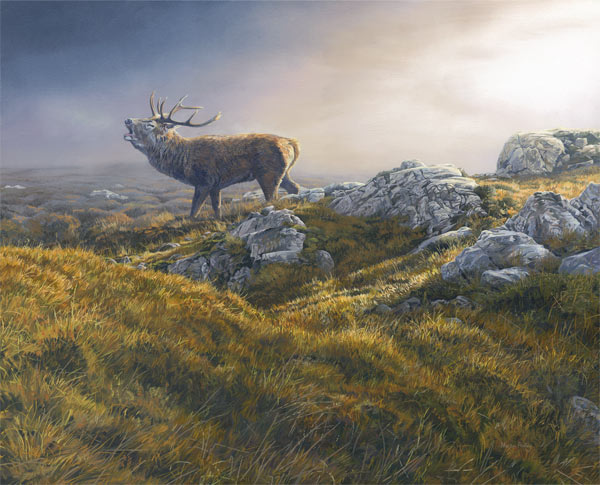 Bellowing Red Deer Stag Print Clearing Mist