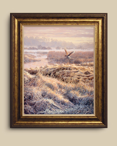 Framed print of a barn owl hovering over a tussocky bank.