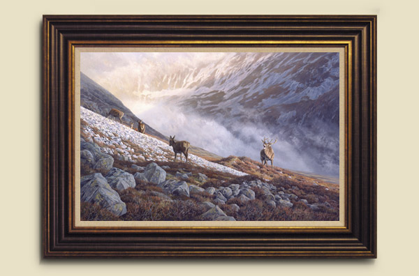 Framed Red Deer Print - Oil painting of a stag roaring during the rut