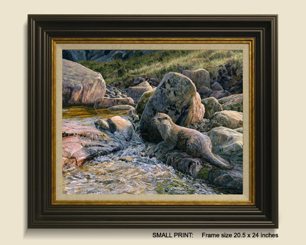 Otter Framed Print for Sale