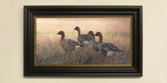 Framed pink-footed geese print for sale