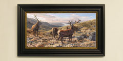 Framed red deer stags print for sale
