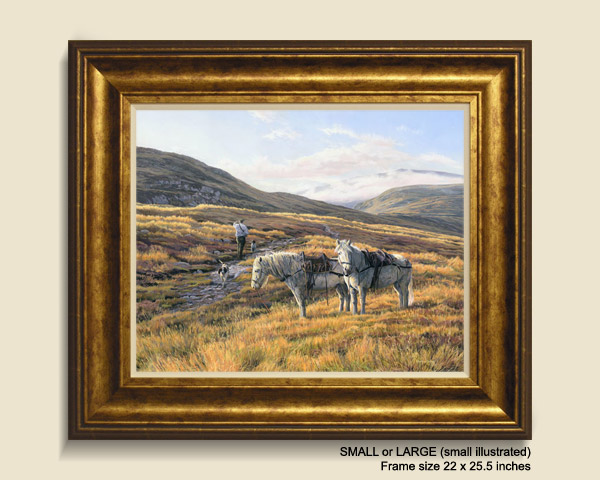 Stalking ponies framed print for sale - Highland Garrons