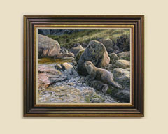 Framed European Otter print for sale