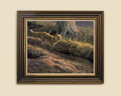 Framed red fox print for sale
