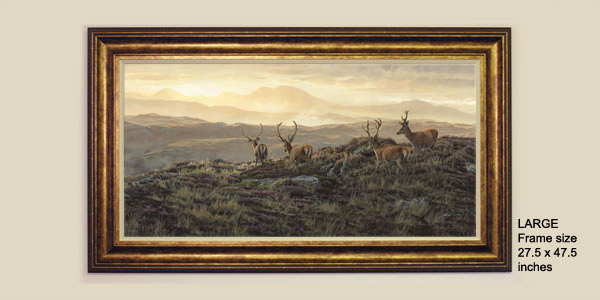 Framed Red Deer Stags Print