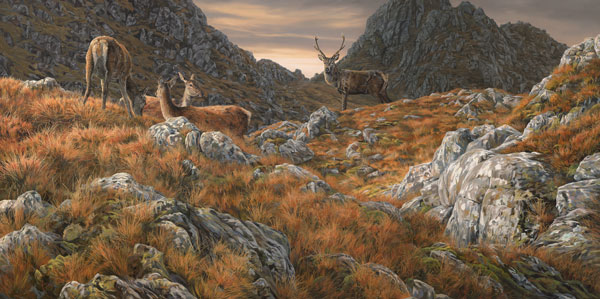 Red deer print from an oil painting by Martin Ridley. Red deer stag and hinds at the foot of some crags in the Scottish mountains.