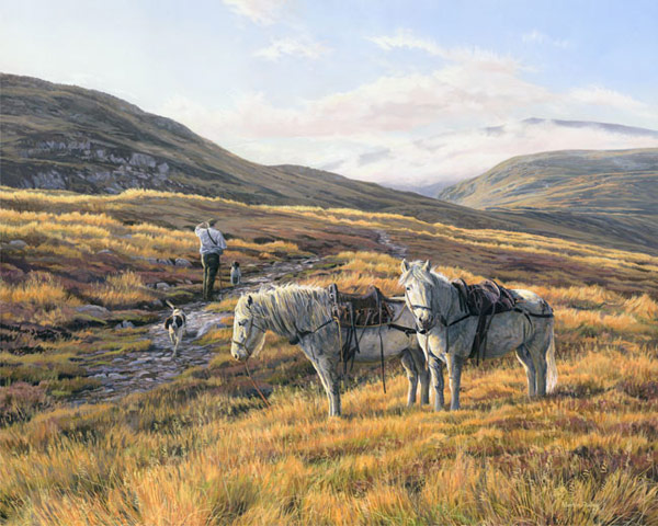 Stalking ponies / Highland Garrons, Red Deer Stalking Print