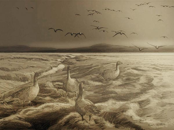 Sketch for Pink-footed geese, Wigtown Bay Oil Painting