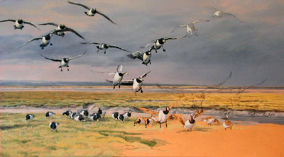 Flock of Barnacle Geese: See how initial sketches are developed into a composition