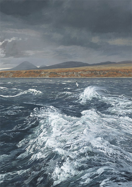 Bird painting in oils -  Gannet over a rough sea off Jura. Stormy waves