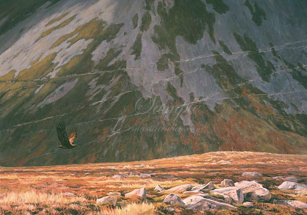 Golden Eagle Painting