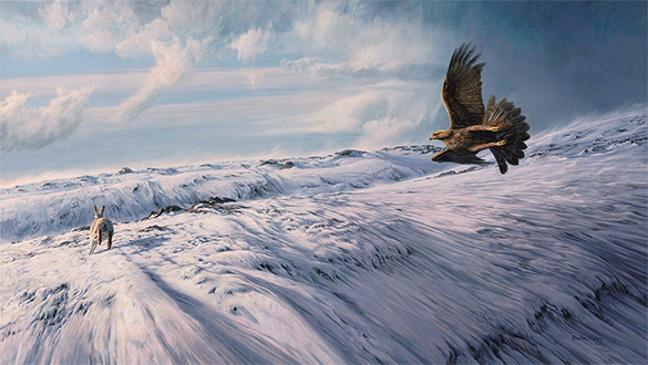 Hunting Golden Eagle - Oil Painting by Martin Ridley. Eagle chasing winter mountain hare over snow.