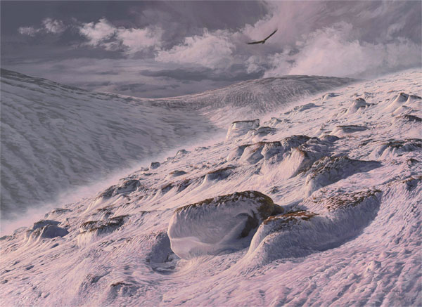 Original Oil painting of a Golden Eagle over the Sron Riach Ridge, Ben Macdui in the Carngorms National Park
