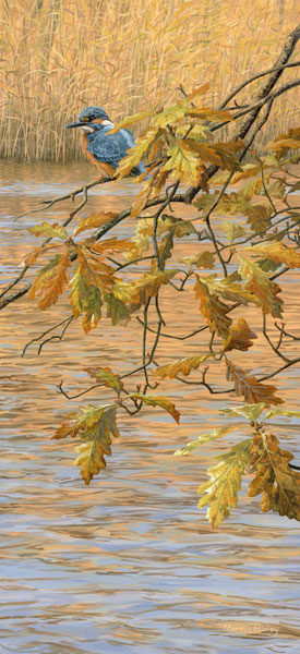 Kingfisher perched on a hanging branch of autumn oak leaves - An original oil painting