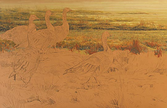 Pink-footed geese painting