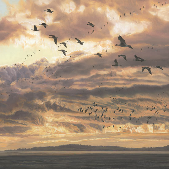 Evening Flight of Pink-footed Geese