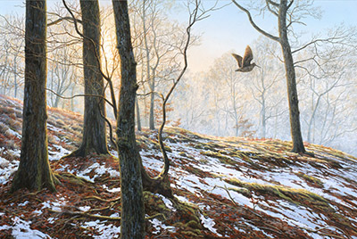 Flushed woodcock - A print on canvas by artist Martin Ridley.