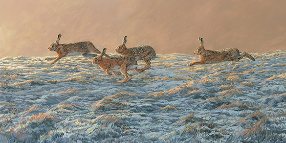 Original oil painting capturing the movement of running hares painted across three panels