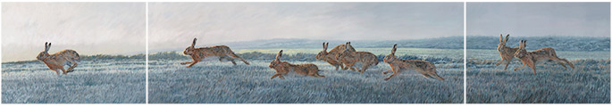 Oil painting by Martin Ridley - Norfolk - chasing brown hares triptych for sale