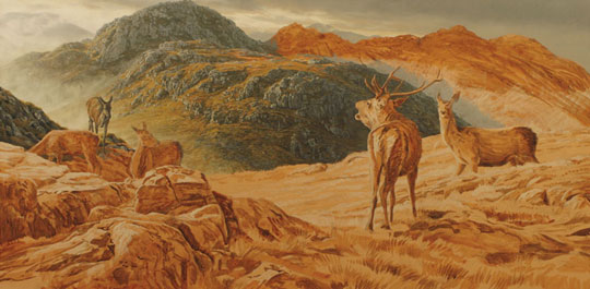 Oil painting demonstration - Red Deer