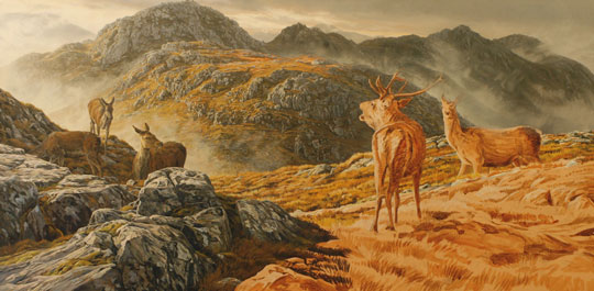 Red Deer Stag and hinds - Stalking Scene in oils