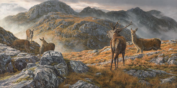 Druim Fada Ridge above Loch Hourn Roaring red deer stag and hinds - Original oil painting of a stalking scene