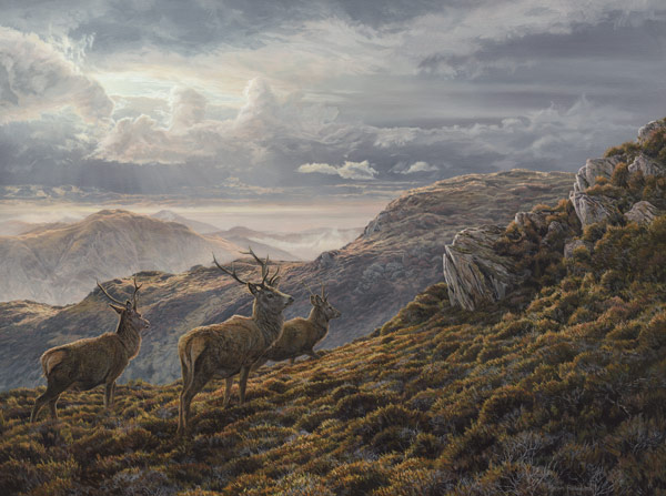 Oil painting on canvas of three red deer stags in the Scottish Mountains