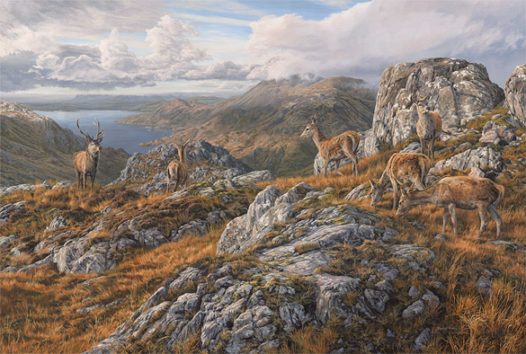 Ben Sgritheall - Red Deer Scottish Highlands Painting