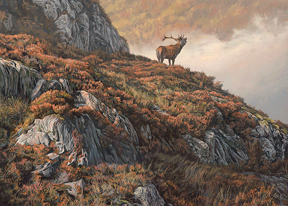 Roaring red deer stag oil painting