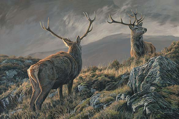 Royal Stags - Red Deer Oil Painting for Sale