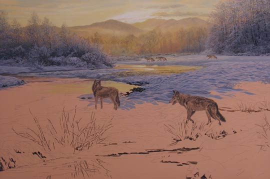 Pack of wolves patrolling in snow. Original oil painting depicting five wolves at the riverside. Wolves Painting