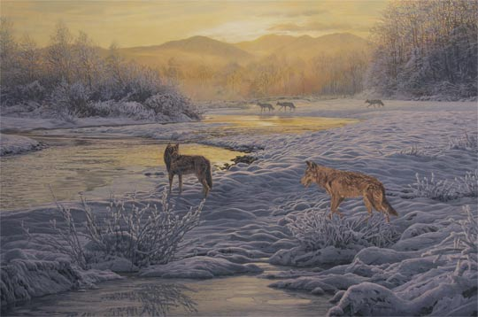 Wolves pack on patrol in snow. Original oil painting depicting five wolves at the riverside.