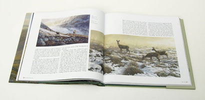 Deer : Artists' Impressions Martin Ridley Paintings
