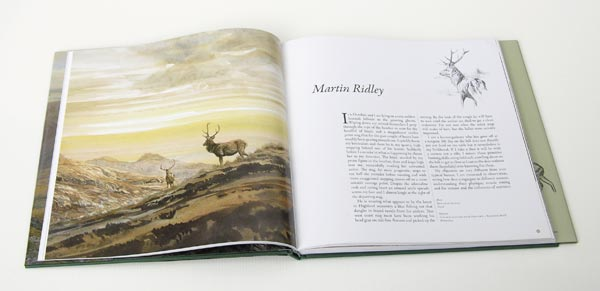 Deer Book for Sale : Artists' Impressions - Illustrated with Martin Ridley red deer paintings