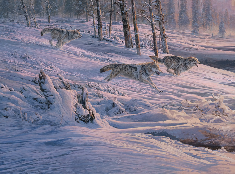 Diptych oil painting of Gray Wolves stampeding American Elk