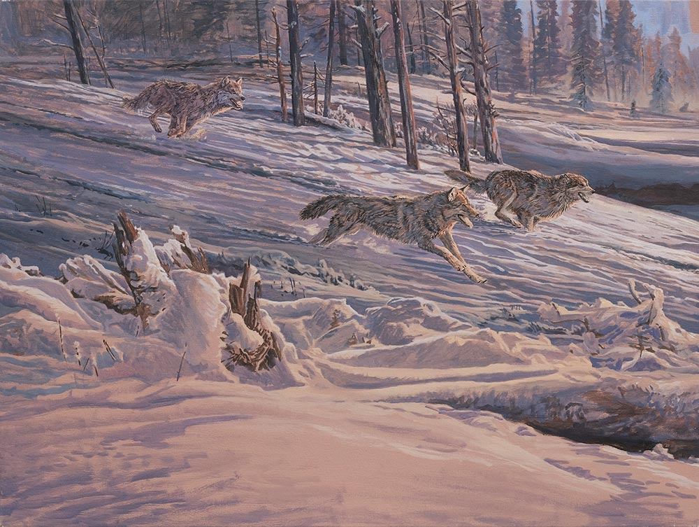 Diptych oil painting of Gray Wolves chasing American Elk or Wapiti